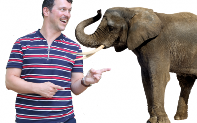 Create Happiness by Addressing Elephant in the Room